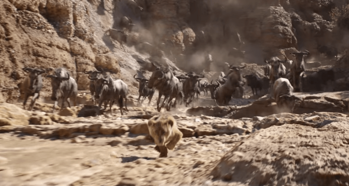 "The Circle of Cash Flow: A Review of Disney's ""The Lion King"" (2019) 3"