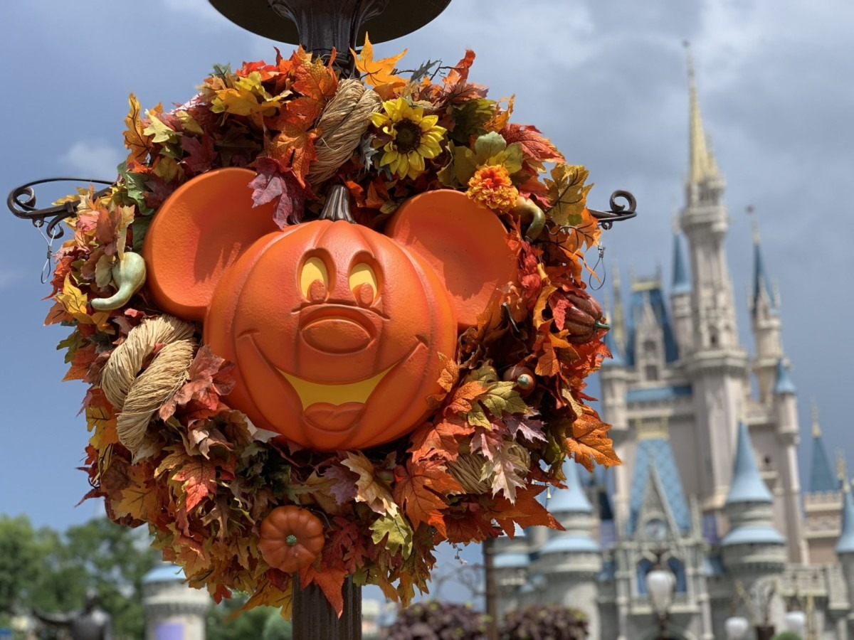 TMSM's Adventures in Florida Living - Boo to You and Disneyland too! 1