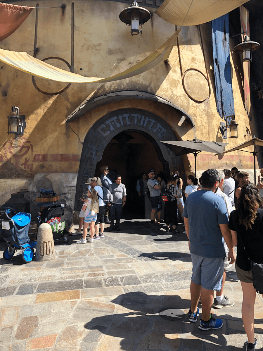 "The New ""Most Wretched Hive of Scum and Villainy"": A Review of Olga's Cantina at Star Wars: Galaxy's Edge 1"