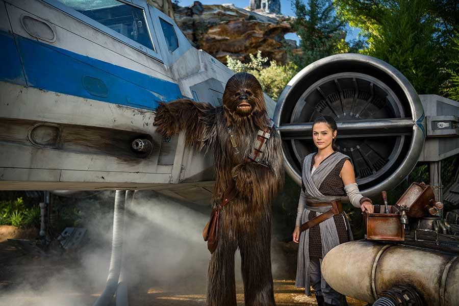 Chewbaca and Rey
