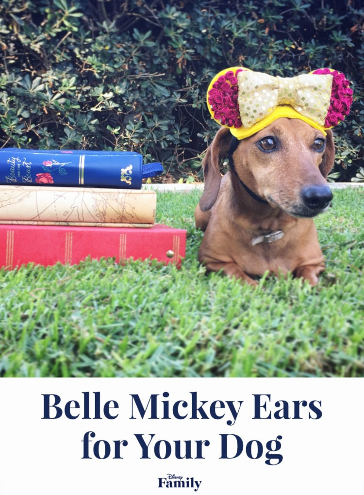 Belle-Inspired Mickey Ears for Your Adventurous Pup 2