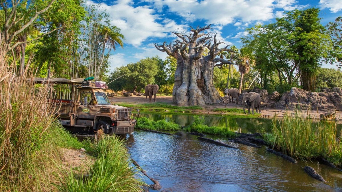 Top 5 Things To Do At Walt Disney World In The Rain 6