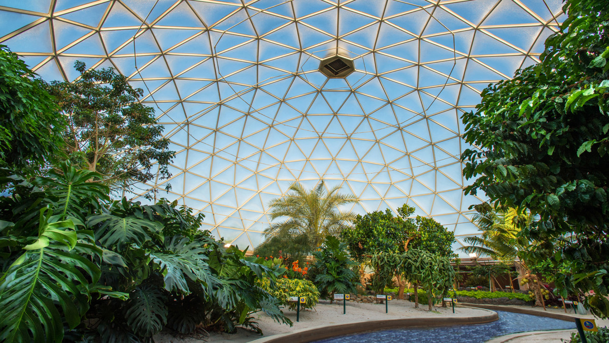 Top Five Things To Do At Epcot 3