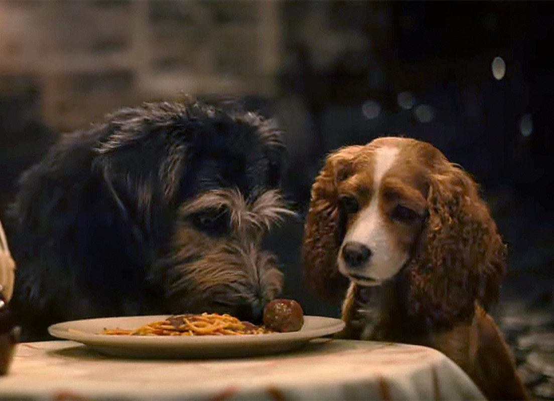 """New Live Action Trailer for """"Lady and the Tramp"""" 1"""