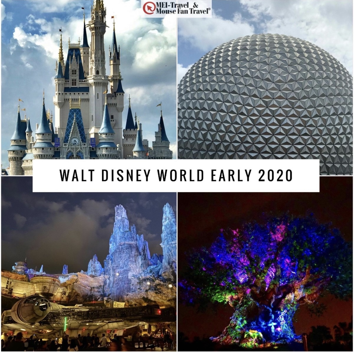 Walt Disney World Early 2020 Offers are Here! 1
