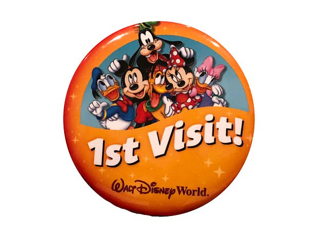 Top 10 Things To Do With Kids On Their First WDW Visit 2