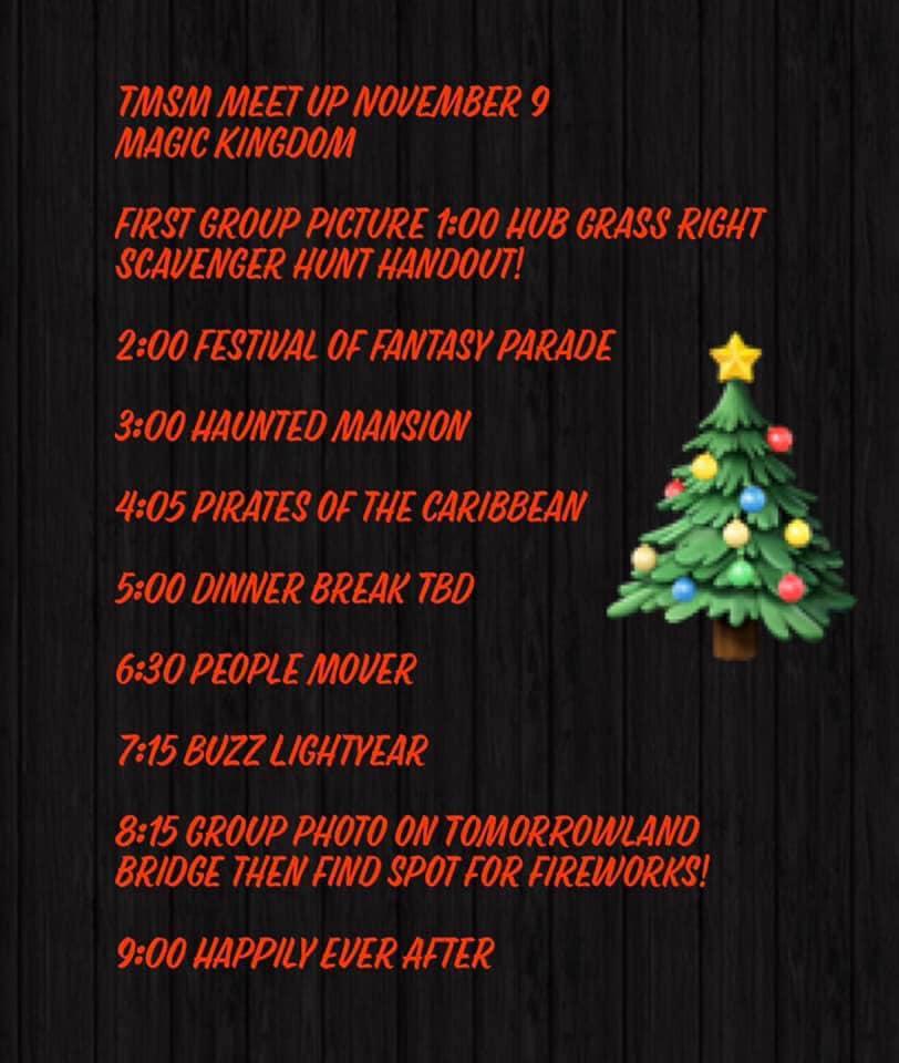 TMSM Meet Up 2019 ~ November 9, Magic Kingdom! #disneylife 2
