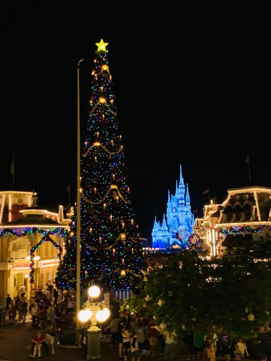 Christmas at the Magic Kingdom! #disneyholidays 8