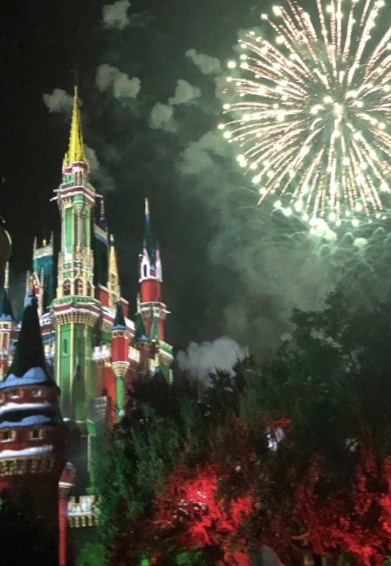 An Unapologetic Fan's View of Mickey's Very Merry Christmas Party 5