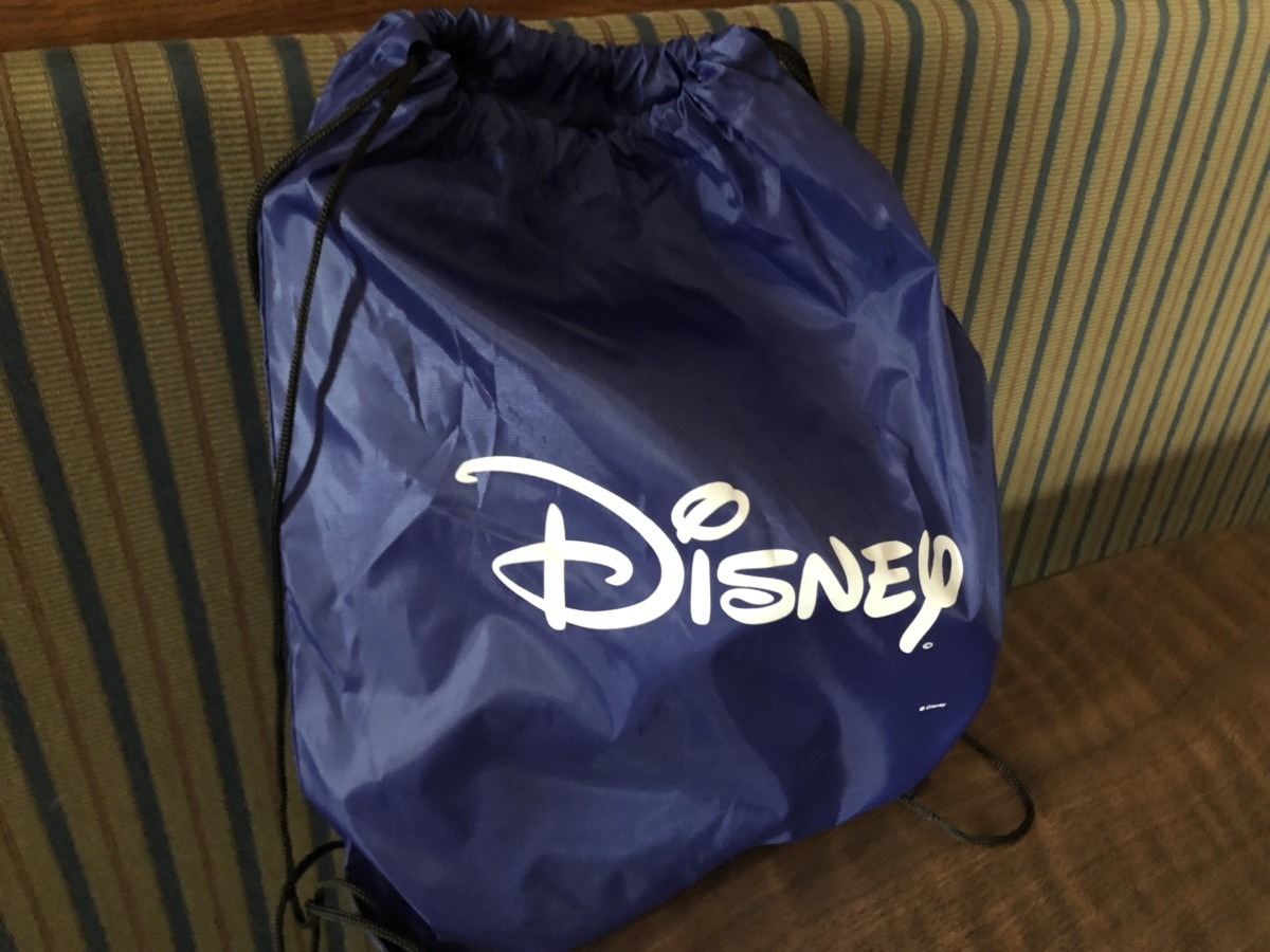 Taking Your Dog Camping at Walt Disney World 2