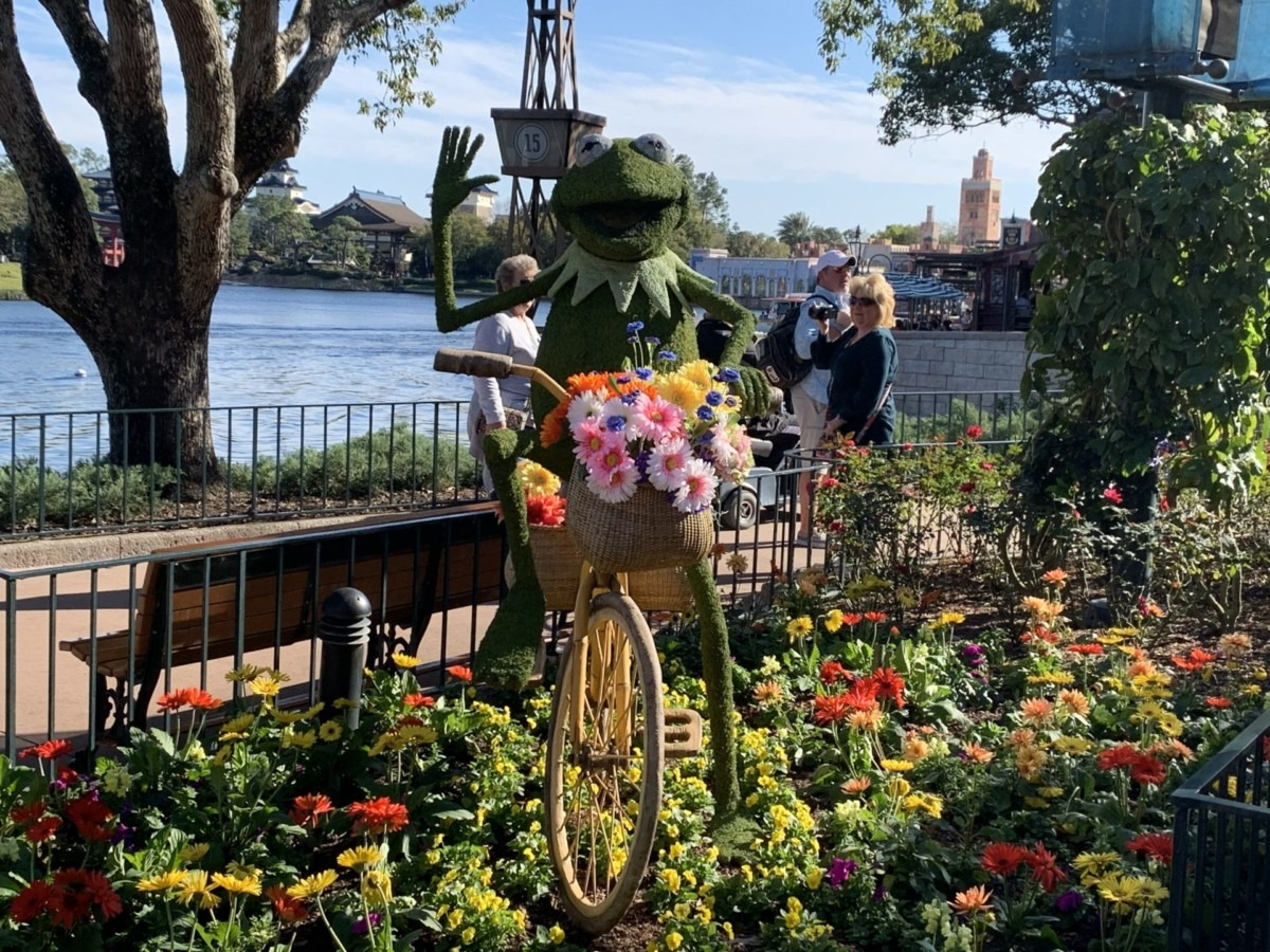 Getting ready for Epcot's Flower and Garden Festival! #freshepcot 7