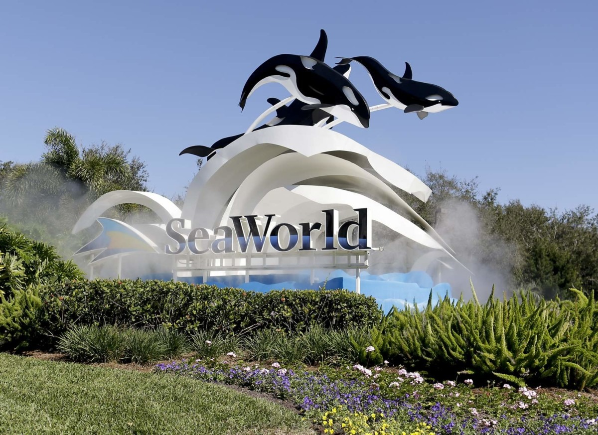 Sea World furloughs more than 90% of its employees over coronavirus pandemic 2