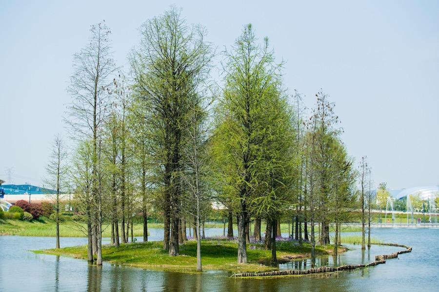 Wishing Star Park at Shanghai Resort