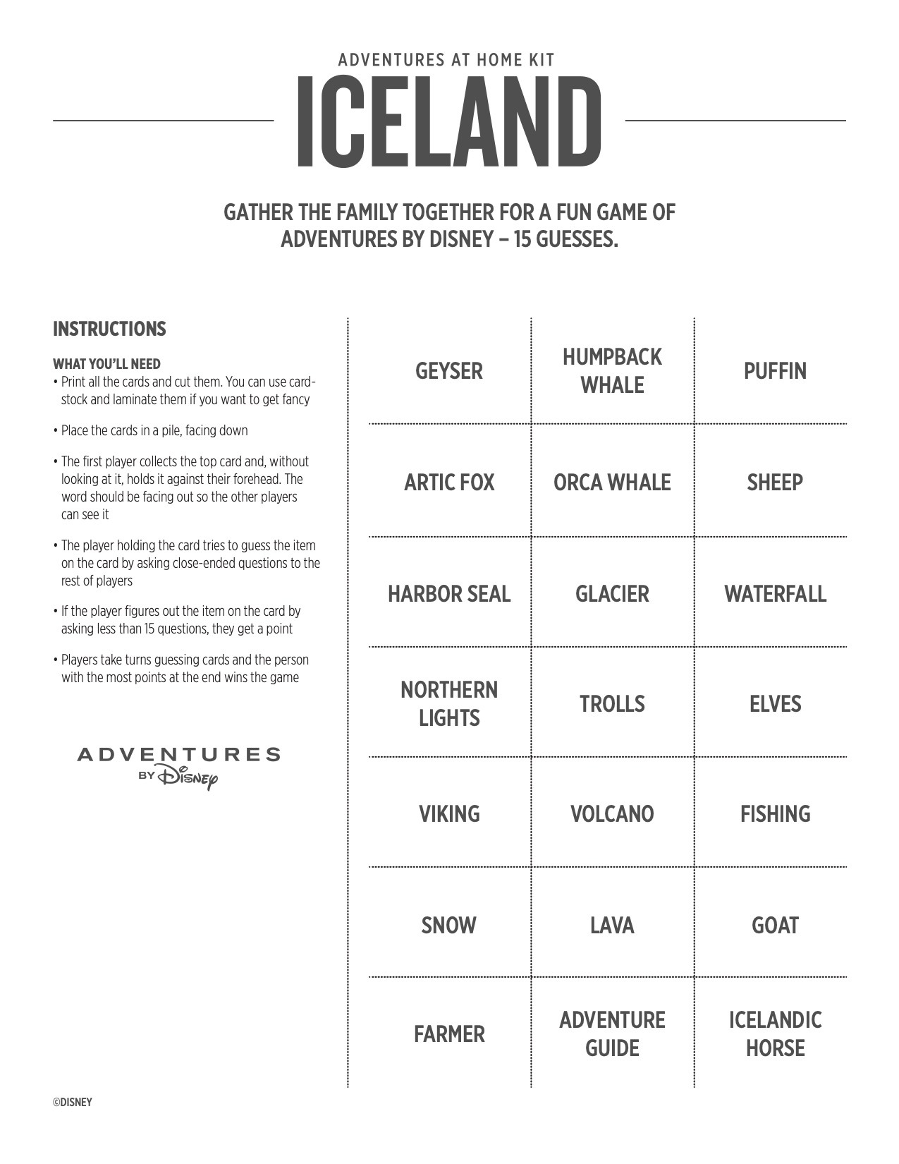 Adventures at Home Iceland Game