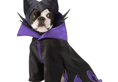 New Disney Halloween Costumes for Pets at shopDisney!