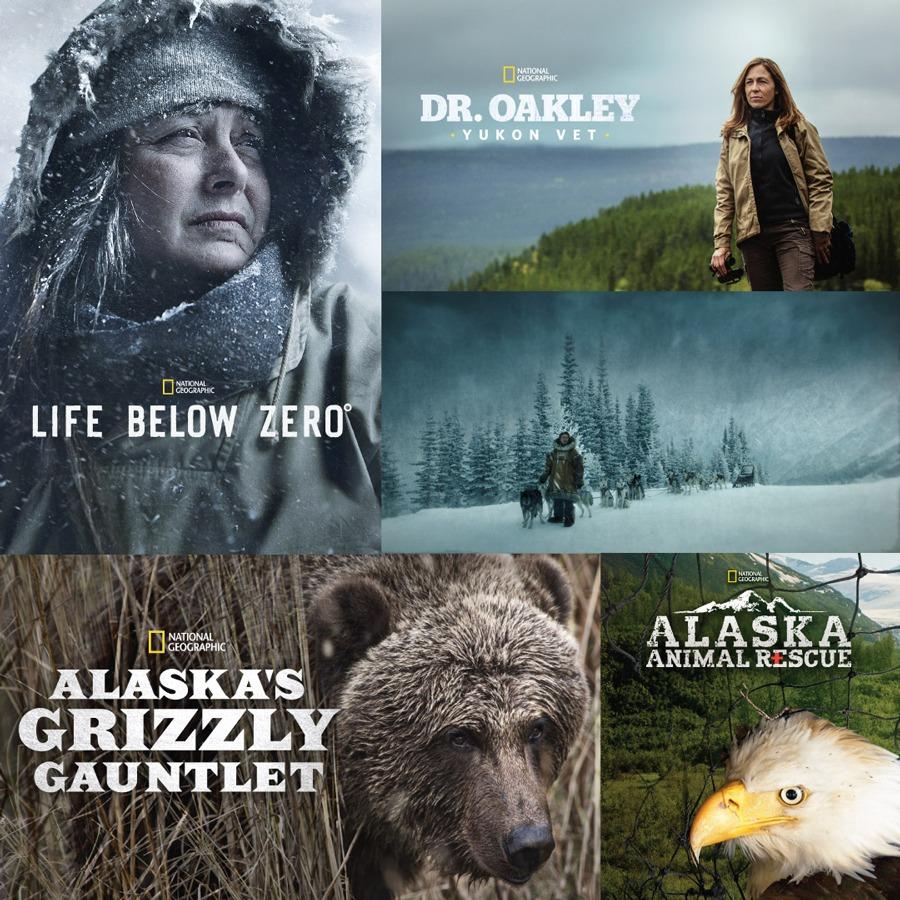 Disney+ Alaska Playlist featuring Togo, Life Below Zero, Alaska's Grizzly Gauntlet, Dr. Oakley, Yukon Vet and Alaska Animal Rescue