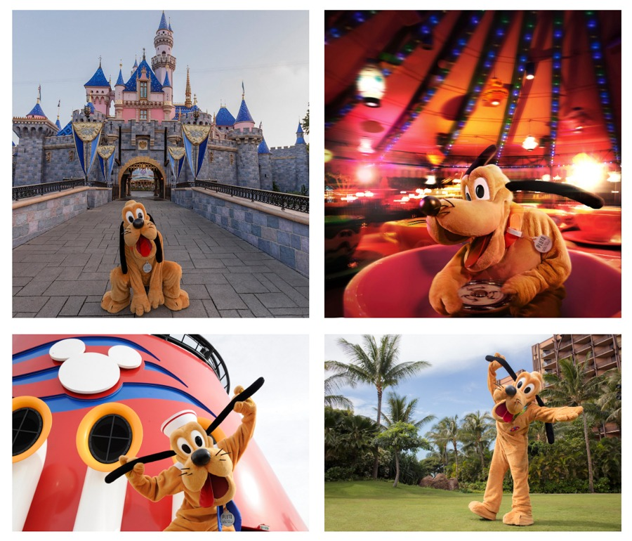 Collage of Pluto at Disney Parks
