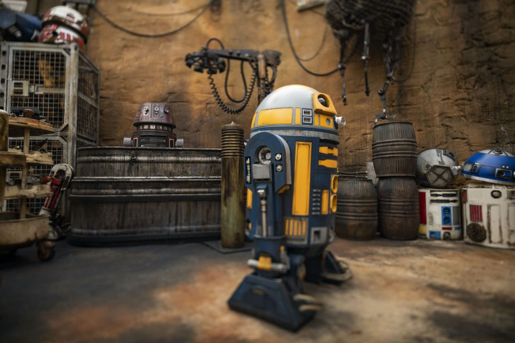 A droid in Star Wars: Galaxy's Edge at Disney's Hollywood Studios