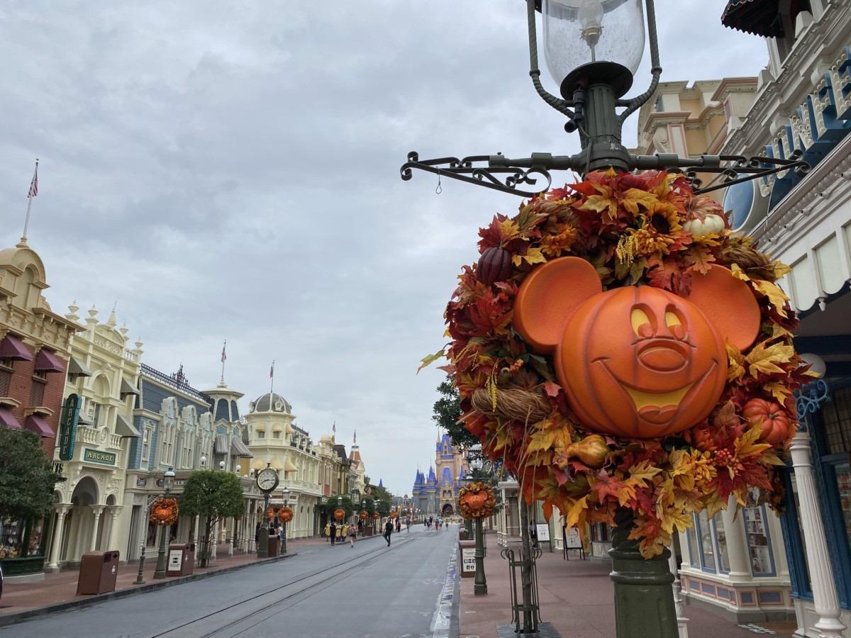 TMSM's Adventures in Florida Living - This is Halloween 3