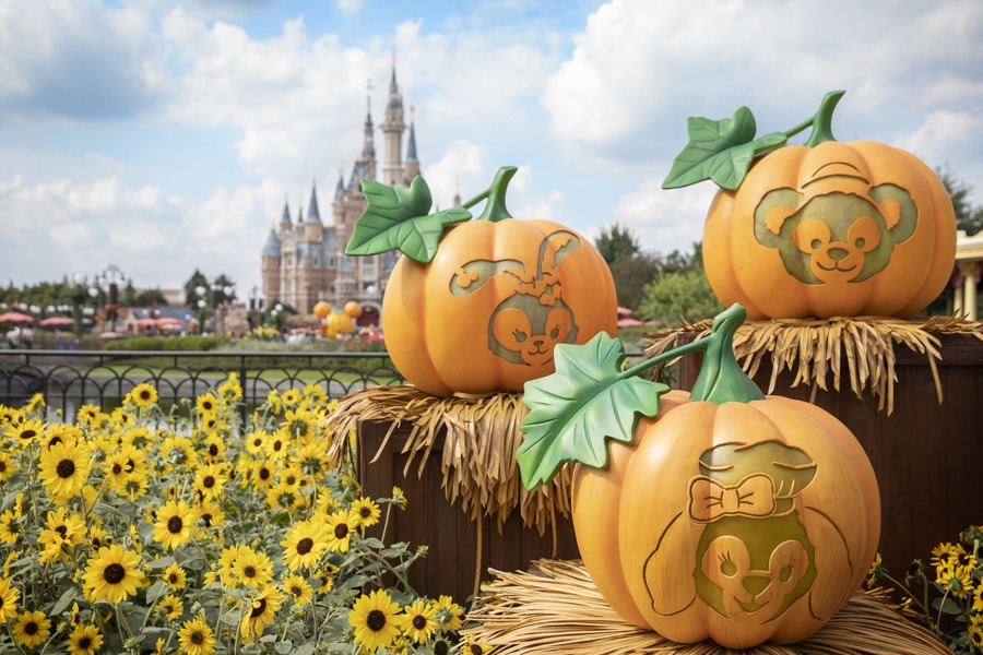 Pumpkins at Shanghai Disney Resort