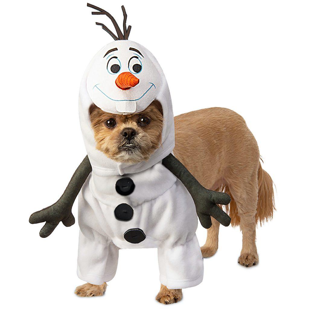 Dog in an Olaf Halloween costume
