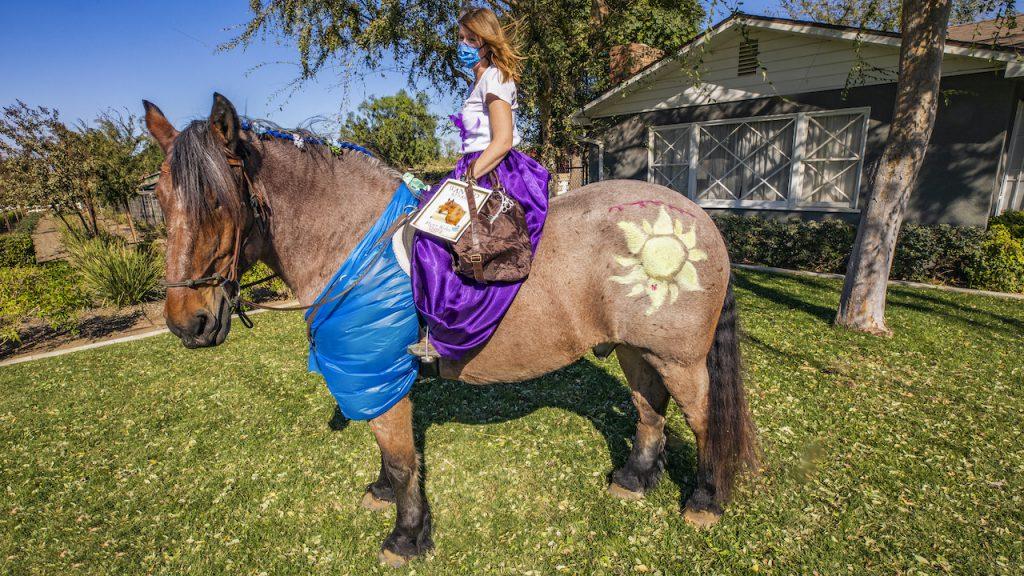 Finn, a Brabant Draft Horse, and cast member Tara Parker