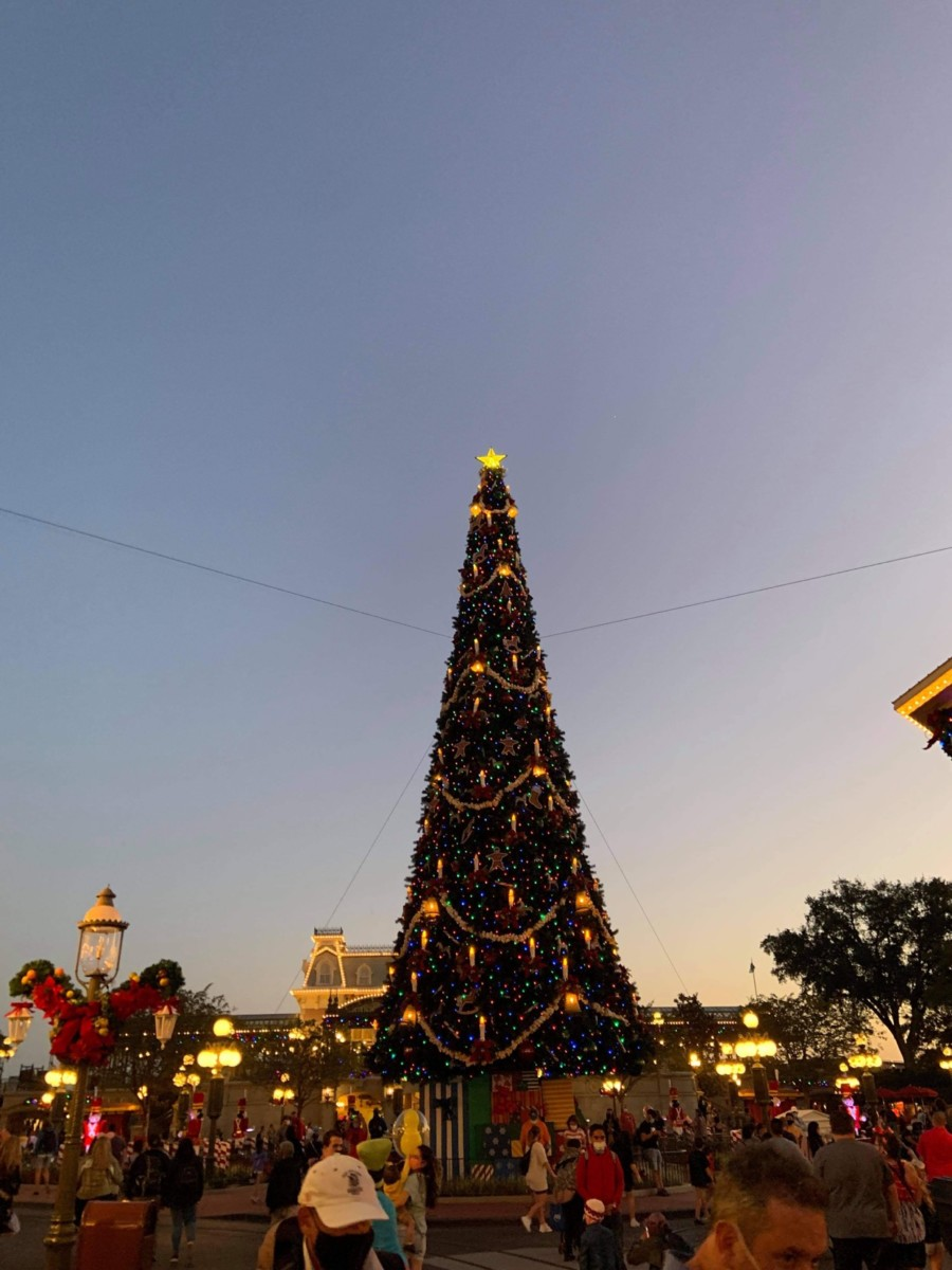 Christmas Decorations at Magic Kingdom (photos) 12