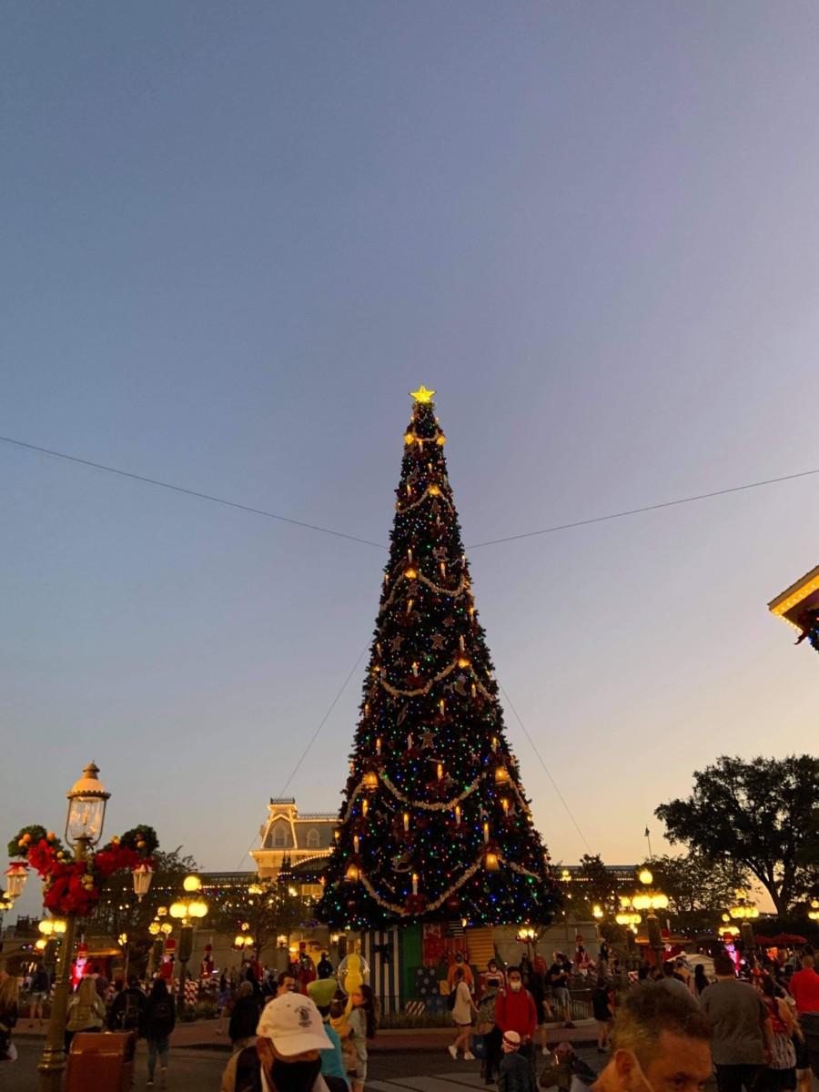 Christmas Decorations at Magic Kingdom (photos) 12